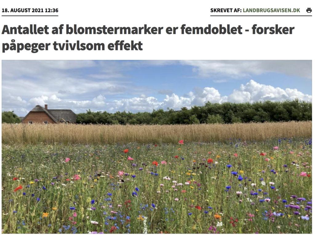 Dette billede har en tom ALT-egenskab (billedbeskrivelse). Filnavnet er Blomstermarker-1-1024x766.jpg
